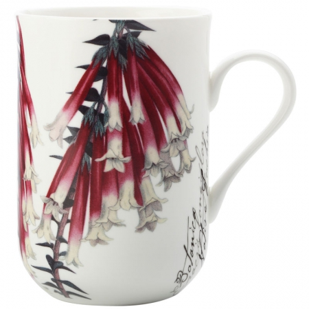 Maxwell & Williams Fuchsia Coffee Mug 300ml (1)