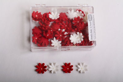 Red and White Daisy Icing