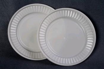 Plastic Suns Plate (100)
