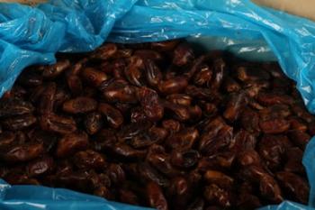 Dried Dates (13 kg)