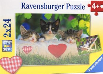 Ravensburger Puzzles 2x24Pce Sleepy Kittens