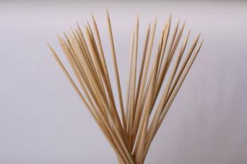 Espetada Stick (100)