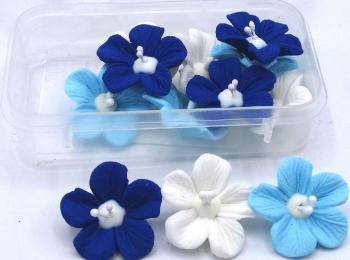 Blossom Blue Mix