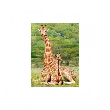 Diamond Dot Painting Mom and Baby Giraffe 30x40