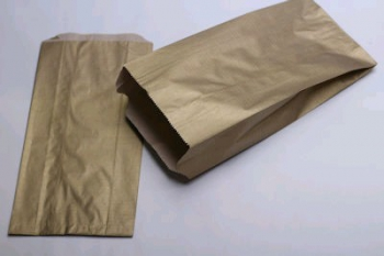 160x67x305 Gold Kraft Gift Bag (25)