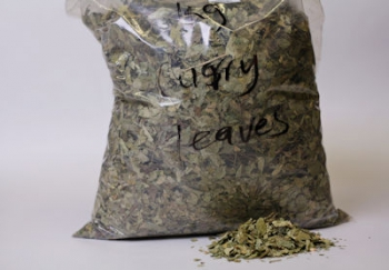 Whole Curry Leaves (1 kg)