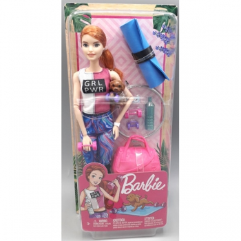 Barbie Wellness Doll Asssorted