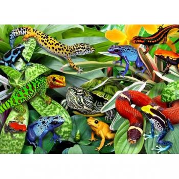 RGS Puzzles Reptiles 50Pce
