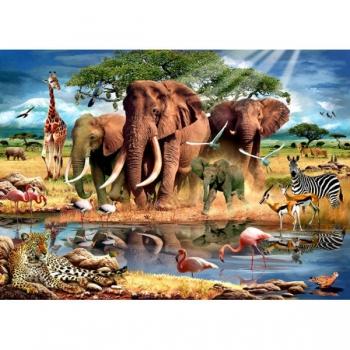 RGS Puzzles Kruger Park 63Pce